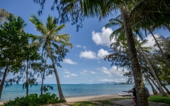 palm-cove-beach-16
