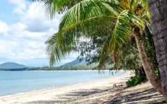 palm-cove-beach-1