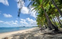 palm-cove-beach-14